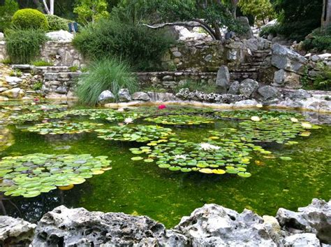5 Healthy Paleo Travel Tips Austin Tx Grass Fed Girl Botanical Garden Tx