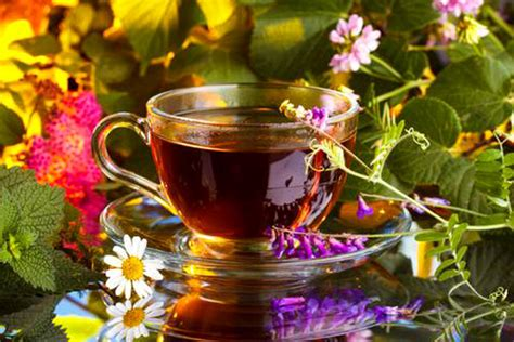 Is There A Tea To Help Lose Weight by Health Benefits Of Herbal Tea
