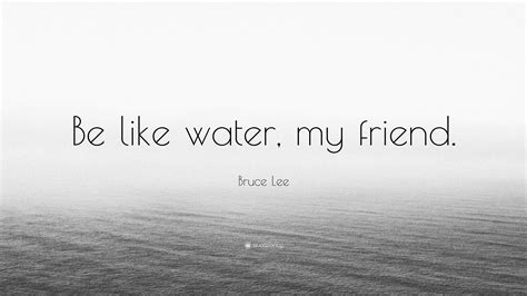 bruce water quote bruce quotes be water
