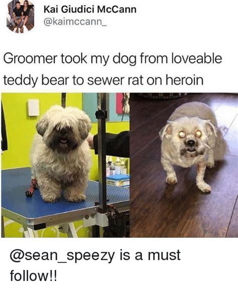 Teddy Bear Meme - 25 best memes about teddy bear teddy bear memes
