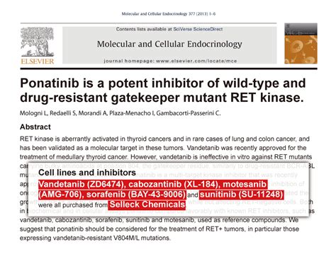 Sutent Sunitinib Malate 12 5 Mg Isi 30 Kapsul Botol sunitinib malate 辉瑞公司授权 pdgfr inhibitor