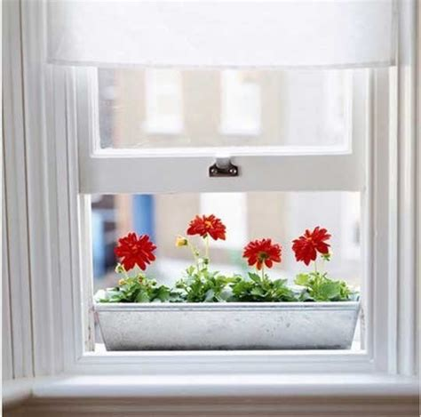 indoor window box indoor window box ideas