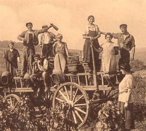 popolare mezzogiorno lavora con noi gaia la madre terra agricoltura biologica