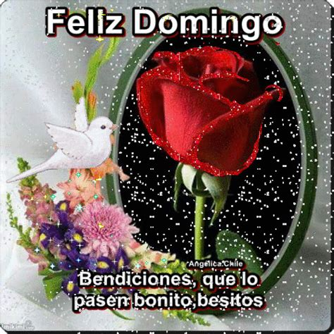 imagenes feliz domingo amor mio sue 209 os de amor y magia lindo domingo frases romanticas