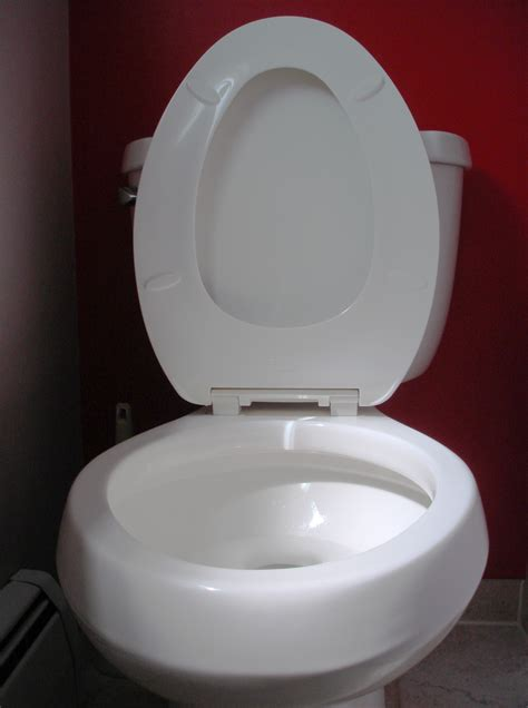 toilet seat file toilet seat up jpg wikimedia commons