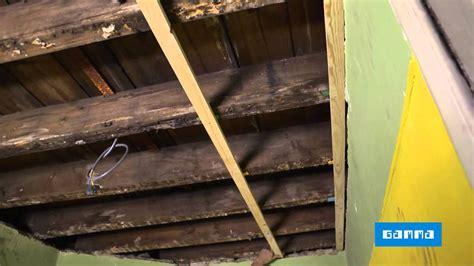 poser un lambris au plafond vid 233 o bricolage gamma