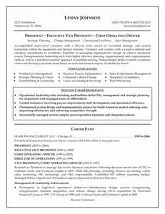 Exle Of An Executive Resume by Professional Executive Resume Sle 2015 2016 Resume 2015