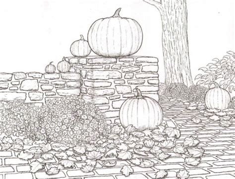 pumpkin coloring pages for adults 159 best coloring pages autumn halloween pumpkins