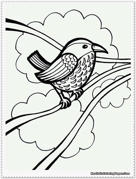 realistic bird coloring pages bird coloring page