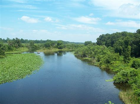 River Of ocklawaha river