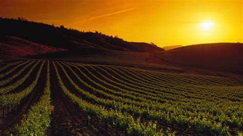 Home Design Mac Os by 1920x1080 California Napa Valley Sunset Desktop Pc And Mac