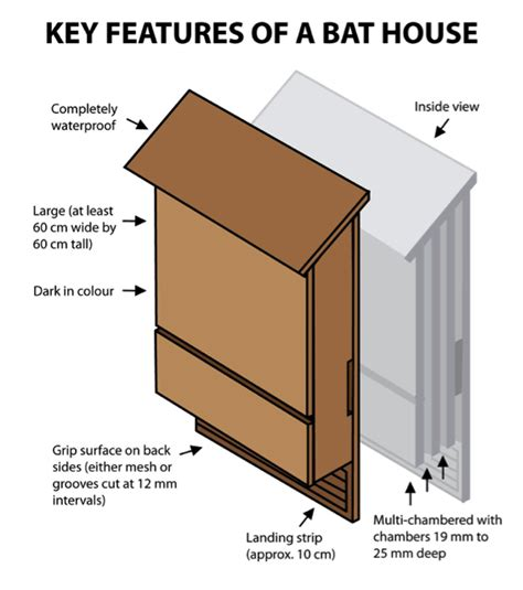 bat house plans pdf bat house plans pdf 28 images bat house design neighbourhood bat small economy