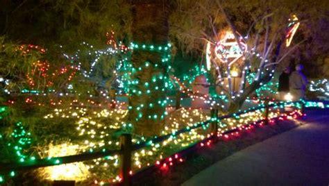 lights palm desert the living desert zoo gardens picture of living desert