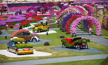 florist jobs in dubai dubai s miracle garden in full flower emirates 24 7