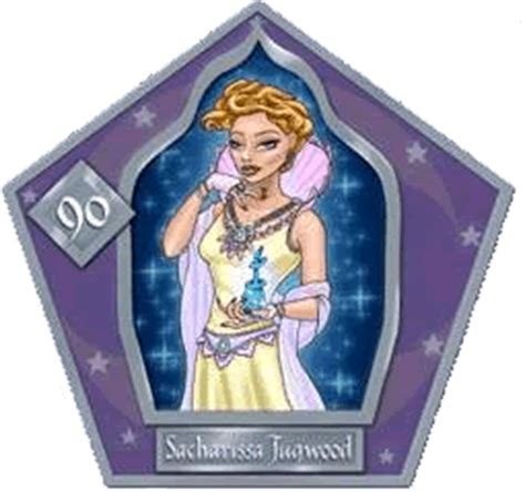harry potter witch and wizard card template quot folio magi a complete guide to all chocolate frog cards