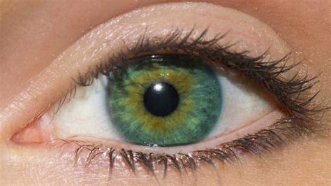green eye color change color to green biokinesis binaural beats
