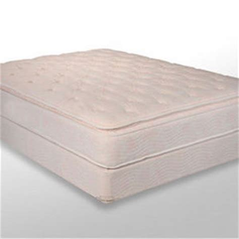 comfort solutions pillow king koil pillow top mattress by comfort solutions reviews