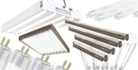 best fluorescent grow lights best t5 fluorescent grow lights 2018 a complete buyer