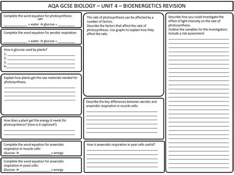 aqa gcse biology bioenergetics revision worksheet by