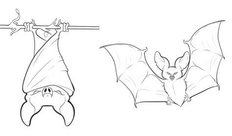 bumblebee bat coloring page 20 free printable bat coloring pages everfreecoloring com
