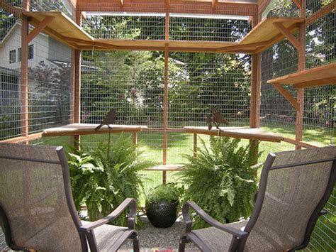 free diy catio plans catio cat enclosure photo gallery catio spaces