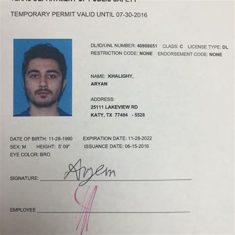 exiucu biz texas temporary drivers license template