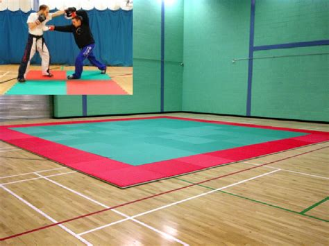 Judo Mat by Mats School Sports Services Ltd