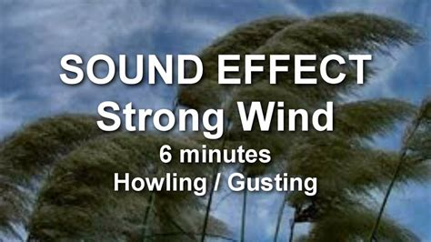 howling sounds wind strong howling gusting 6 minutes sound effect