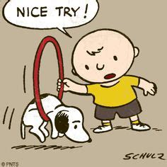 Good Try Meme - 1000 images about charles schulz on pinterest peanuts