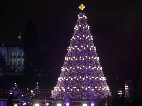 italian town lights world s biggest christmas tree