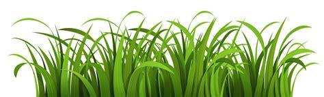 grass clipart free grass vector png www pixshark images galleries