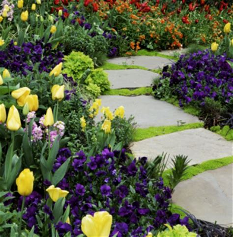 bulb garden ideas gardens inspired planting bulbs in layers