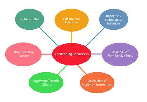 challenging behaviour children challenging behaviour in children with autism asd belfast