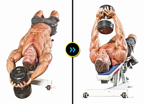 bench dumbbell pullover dumbbell pullover exercise guide bodybuilding wizard