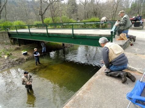 pa fish and boat commission jobs pa fish and boat commission begins trout stocking pine