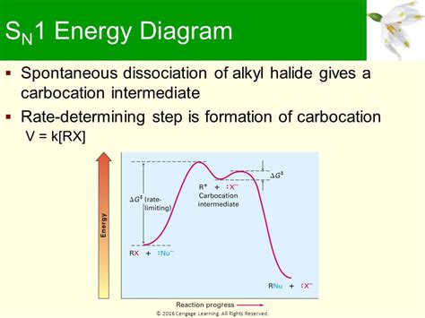 sn1 energy diagram learning objectives the discovery of nucleophilic