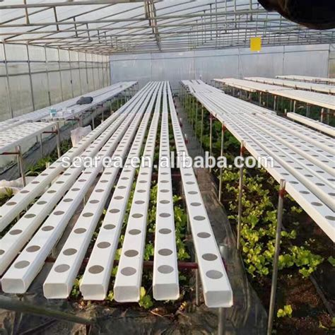 nft hydroponics pvc channel  hydroponic growing system