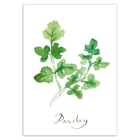free printable herb poster parsley print herbs kitchen wall art watercolor food