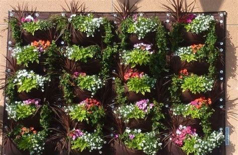 Pocket Vertical Garden Vertical Gardening Greenmylife Anyone Can Garden
