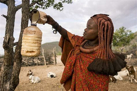 himba tribe color 248 best images about photos livestock and food on