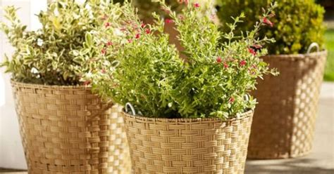 Outdoor Planters Clearance by Glenwillow All Weather Wicker Planters Large Is 22 Quot X
