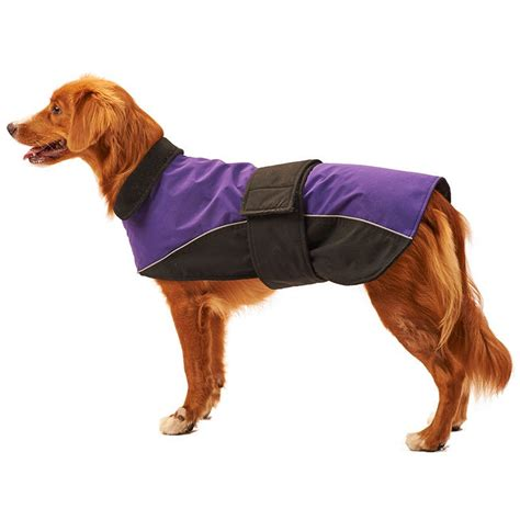 jacket for dogs fashion pet lookin waterproof reflective coat purple coats