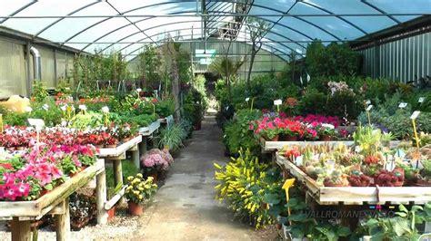 garden center vallromanesverd centro de jardiner 237 a hd