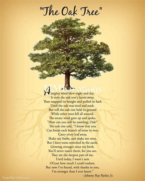 meaning of trees oak tree symbolism in the bible beatiful tree