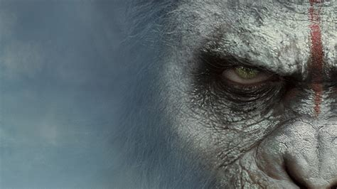 planet of the apes images war for the planet of the apes wallpapers images photos