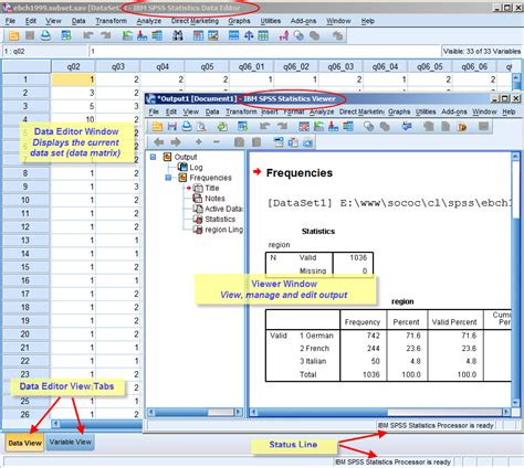 spss tutorial with exles pdf spss windows