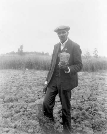 george washington biography britannica george washington carver american agricultural chemist