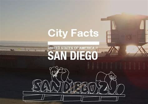 Language Door San Diego by Let 180 S Taco 180 Bout San Diego Infographic Ef Netherlands
