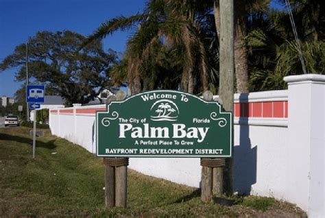 puppies for sale palm bay fl best 20 palm bay florida ideas on hotels in destin florida in florida