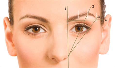 Get Your Best Faceliterally by How To Shape Your Eyebrows The Best Shape To Flatter